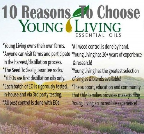 top-10-reasons-to-choose-yl1