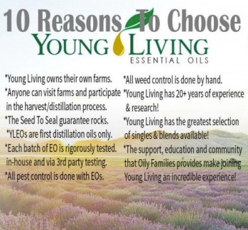 5 - top-10-reasons-to-choose-yl1